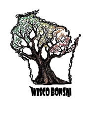 Kevin S - Wisco Bonsai